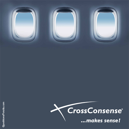 Link to CrossConsense Company brochure